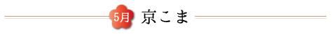 201705ranteidentou-tytle_koma.jpg