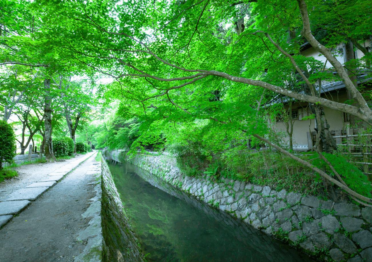 祇園 / 東山イメージ