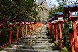 「貴船神社」の見どころ|幽玄で神秘的な「縁結び」のパワースポットイメージ>