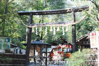 京都・嵐山「野宮神社」の見どころ|霊験あらたかな「じゅうたん苔」の名所イメージ>