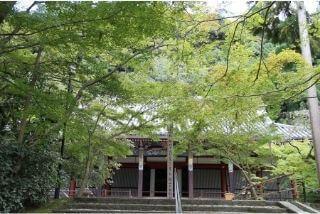 永観堂(禅林寺)のみどころ|約3,000本のカエデを誇る紅葉の名所イメージ>