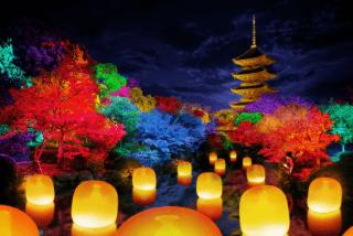 【京都】チームラボ 東寺の観光・楽しみ方 歴史文化とデジタルアートの融合イメージ>
