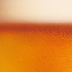 brooklyn_beer.png